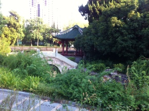 Nothing like a Chinese garden to calm you down before going into the doctor's office.